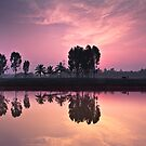 farmer-reflection-sunrise by Dinni H