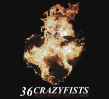 36 CRAZYFISTS by alconchel22