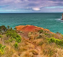 Shipwreck Coast Pano. by Phil Thomson IPA