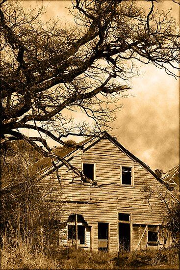 Abandoned by Rookwood Studio ©