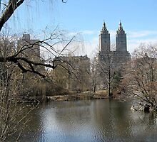 Central Park Scenery - New York City by Patricia127