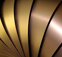 Shiny Armadillo. by dgscotland