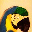 Animal portrait of a parrot  by StuartBoyd