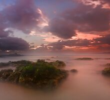 Hastings Point Sunrise NSW Australia by Beth  Wode