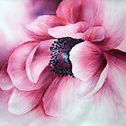 Anemonie by Bev  Wells