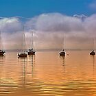 Dead Calm by Monte Morton