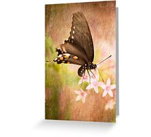 Spring Pastel Greeting Card