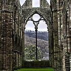 Tintern Abbey  by James Taylor