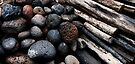 Sticks and Stones by Alex Preiss