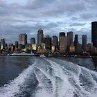 Seattle Cityscape at Dusk by lensharp