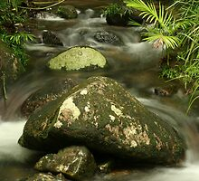Mossman Cascade by paulmarkey