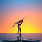 Splashing Water Droplet by Sami Sarkis