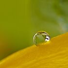 Droplet by prabhakaran