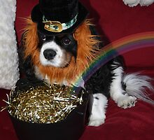 Charlie Leprechaun !! : Don't Come Near My Pot of Gold !! by AnnDixon