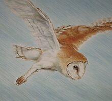 Arrow The Barn Owl by leunig