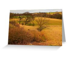 February Landscape along the River Tees, North East England Greeting Card