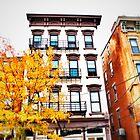 Blue Windows - Downtown Cincinnati by Alex Baker