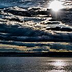 Morning Glory 6 by Željko Malagurski