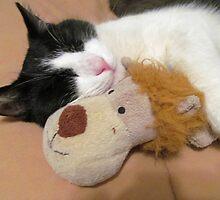 Peppy's Teddy Bear by nikspix