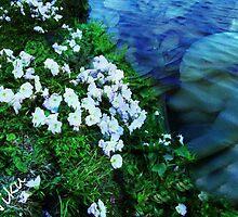 Sea Angel by NIKULETSH