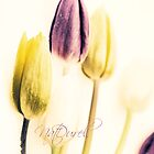 Vintage Tulips by Natalie Durell