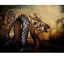 Trifling With Dragons Photographic Print
