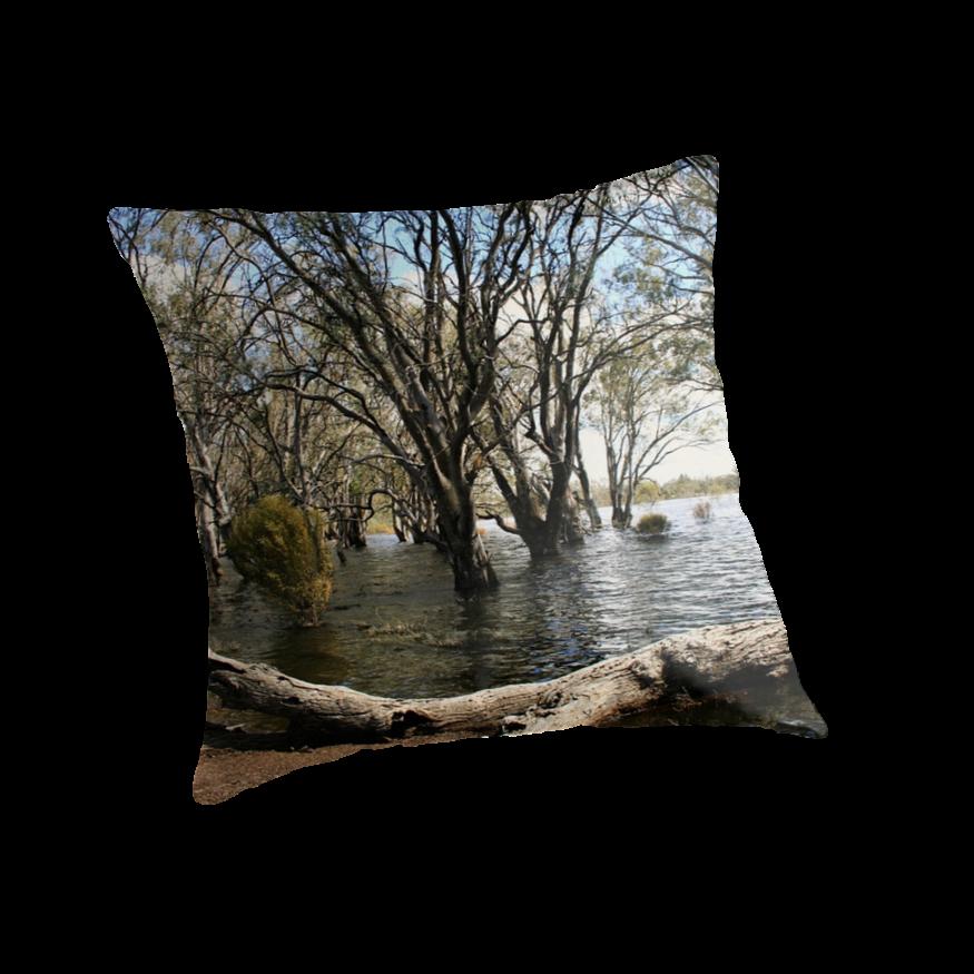 Flooded lake at Hattah by Matt  Carlyon