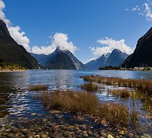 Milford Sound by Martin Canning
