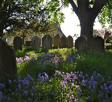 Spring Afternoon: Westerham by ColinKemp