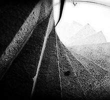 166 Steps by Lenagraphy