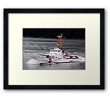 Protecting The Country Framed Print