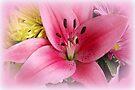 Oh Lovely Lily! by AuntDot