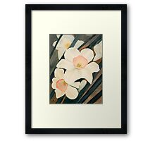 Narcissus Flowers in the Early Garden Framed Print