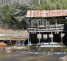 Sciple's Mill by Ginger  Barritt