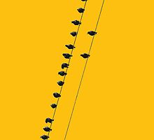 Birds on a wire - iphone by mattslinn
