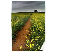 As We Walked In Fields Of Gold Poster
