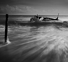 Dramatic SS Dicky by Kate Wall