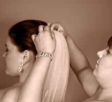 Pinning the veil by Kathleen Hill