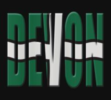 Devon flag by stuwdamdorp