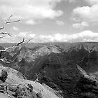 Not the Grand Canyon by linaji