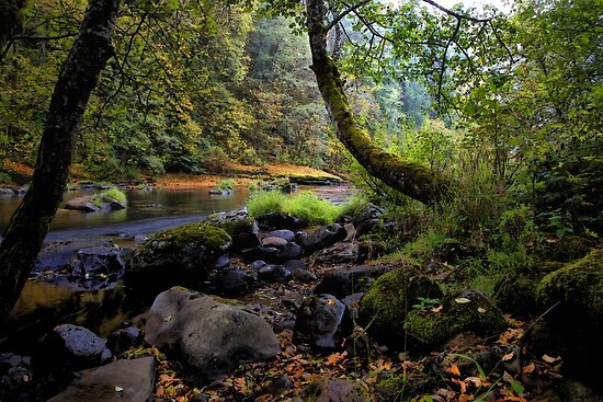 Fall On Lake Creek by Charles & Patricia   Harkins ~ Picture Oregon