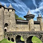 The Chateau de Comtal, Carcassonne by jacqi