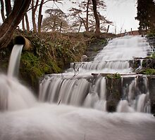 Newton Park Waterfall.. by Lauren Tucker