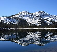 Donner Lake Reflection by MindyLinford