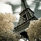 Paris - EIffel Tower in Infrared by Kaitlin Kelly