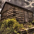 Clifton Cabin Under Clouds by Terence Russell