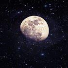 Evening Moon - 3/4/12 by Scott Mitchell