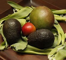 Avocado, pear, mango, tulip leaves by Jay Reed