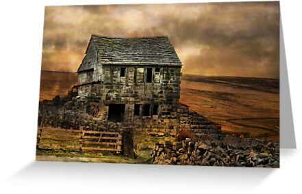 The deserted cottage ! by Irene  Burdell