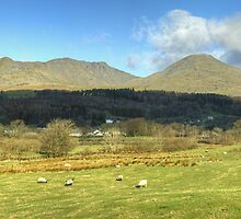 The Coniston Fells  by VoluntaryRanger